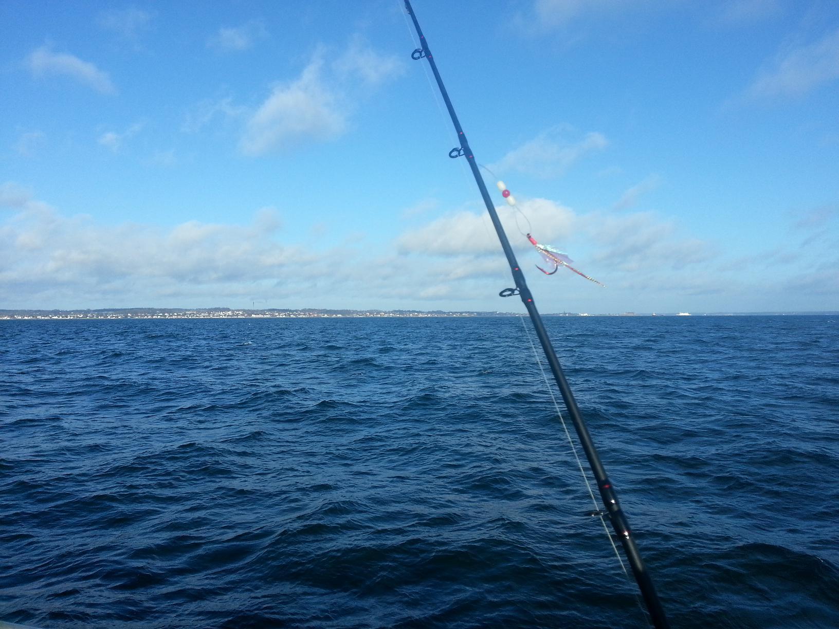 kystfiskeri efter fladfisk