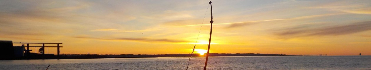 Fishi.dk – Mit liv med fiskeri